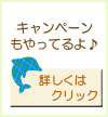 記事用キャンペーン夏.jpg